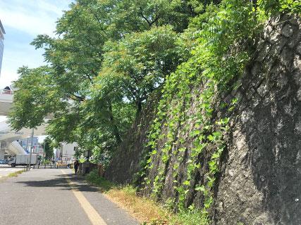 名古屋城 土塁
