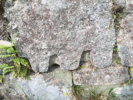 苗木城 矢穴