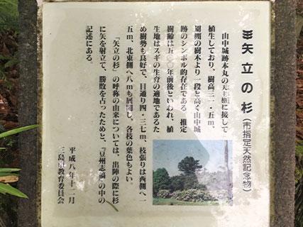 山中城 矢立の杉