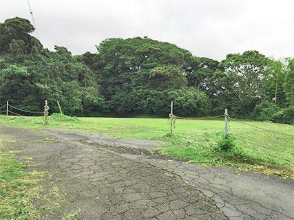 興国寺城 三の丸