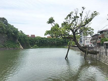 名古屋城 水堀
