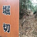 三河山中城址
